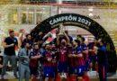 Copa Libertadores: histórico título para San Lorenzo